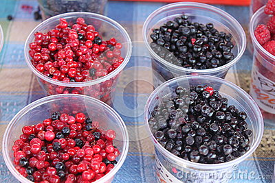 Blueberry and cranberry fruit