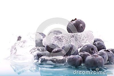 Blueberry on Ice