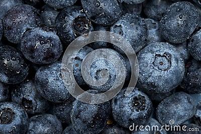 Blueberry macro background, selective focus