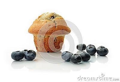 Blueberry Muffin II