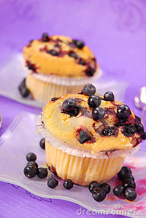 Free Blueberry Muffins Royalty Free Stock Photos - 14456728