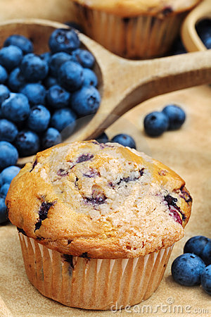 Free Blueberry Muffins Royalty Free Stock Photos - 15513948