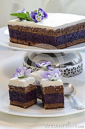 Blueberry s pie bars with ricotta cream