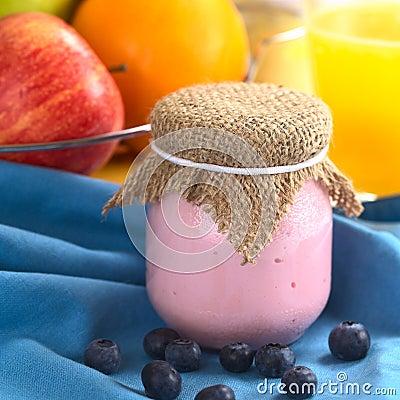 Free Blueberry Yogurt Royalty Free Stock Photography - 20358497
