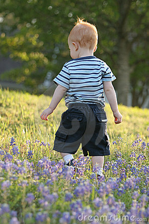 Bluebonnet walker