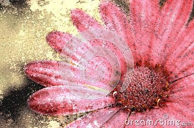 Blume Grunge