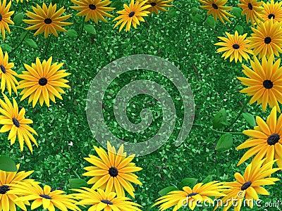 Blumen-Blätter