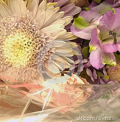 Blumen und weiße Verpackung