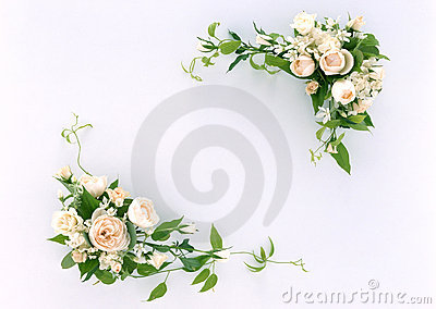 BlumenFrame-11