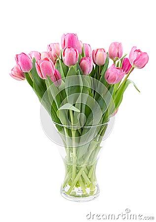blumenstrau der rosa tulpen in einem klaren vase stockfotografie bild 29933842. Black Bedroom Furniture Sets. Home Design Ideas