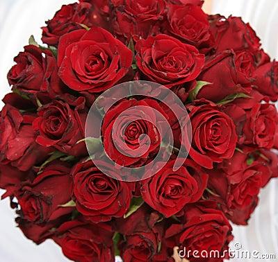 Blumenstrauß der roten Rosen
