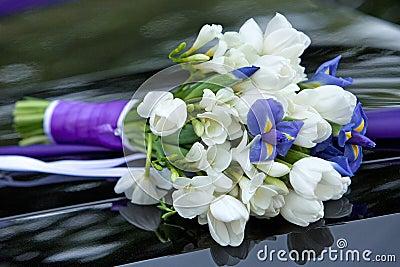 blumenstrau von den blumen blau und wei e farben von iris und von tulpen f r die. Black Bedroom Furniture Sets. Home Design Ideas