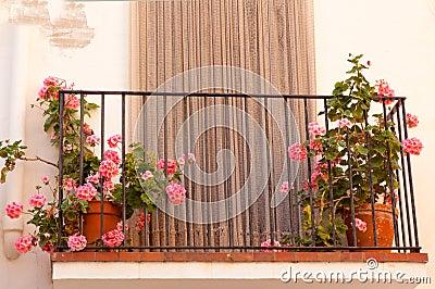 blument pfe auf dem balkon des hauses stockfoto bild. Black Bedroom Furniture Sets. Home Design Ideas