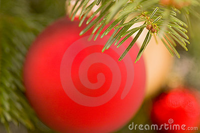 Blurred christmas tree decorations background