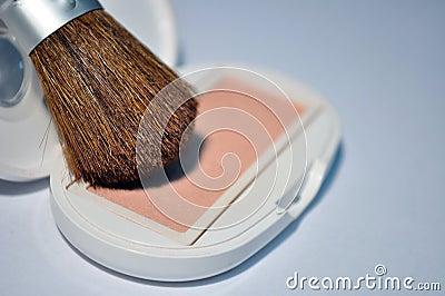 Blush brush and blusher