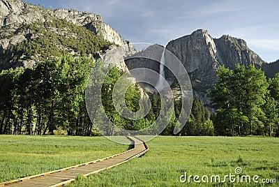 Boardwalk across a meadow in Yosemite Valley