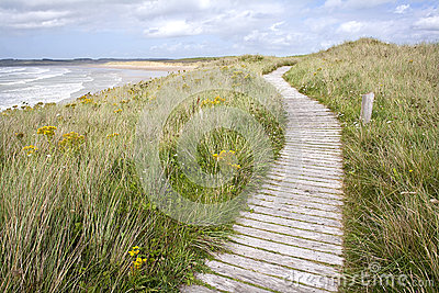 Boardwalk coastal path.