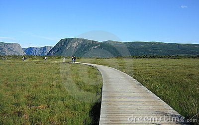 Boardwalk Curving to Western Brook Pond Editorial Photo