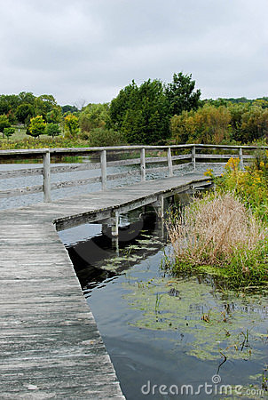 Boardwalk through a Pond