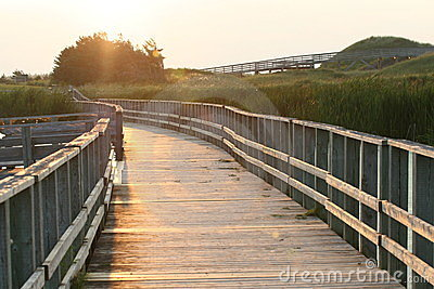 Boardwalk on sand dunes