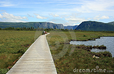 Boardwalk to Western Brook Pond Editorial Stock Photo