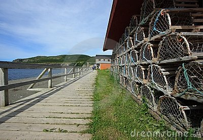Boardwalk in Trout River Editorial Stock Photo