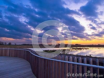 Boardwalk wetland