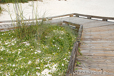 Boardwalk on white sand beach