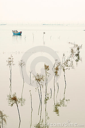 Free Boat At Rest Stock Image - 8991781