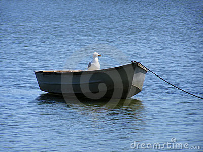 Boat with bird