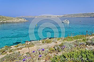 Boat in the Blue Lagoon - Malta