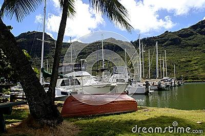 Boat Harbor at Kalapaki Bay