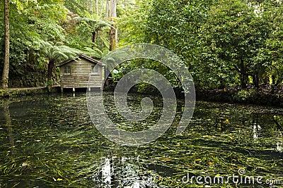 Boat House on a Lake