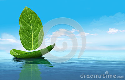 Boat from leaves