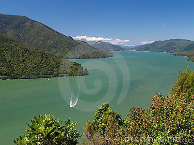 Boat in Marlborough Sound