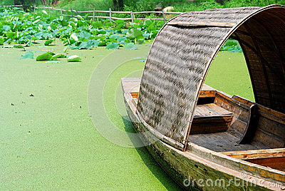 Boat resting on a pond full of lotus