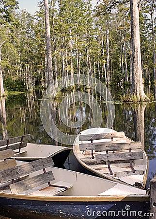 Boat in Swamp