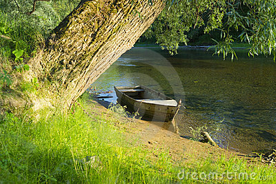 Boat and Tree