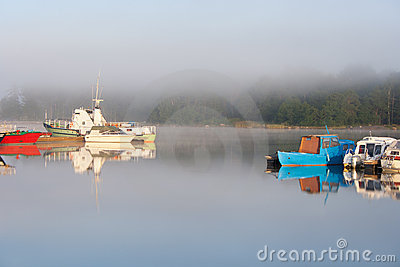 Boats in dock in foggy morning