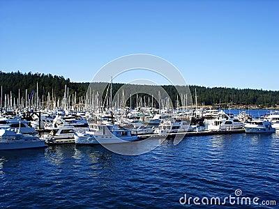 Boats docked in harbor