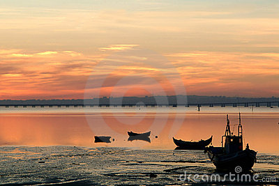 Boats of fish at sunset