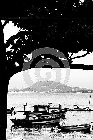 Boats moored in Rio de Janeiro