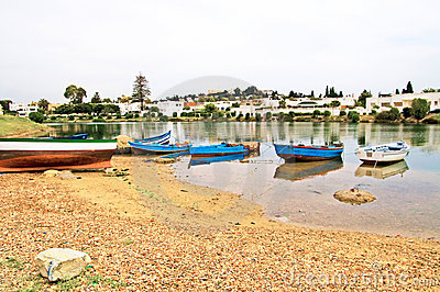 Boats near village