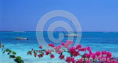 Boats at Trou aux biches beach, Mauritius Island