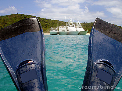 Boats View Between Fins