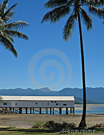 Boatshed and Palm trees