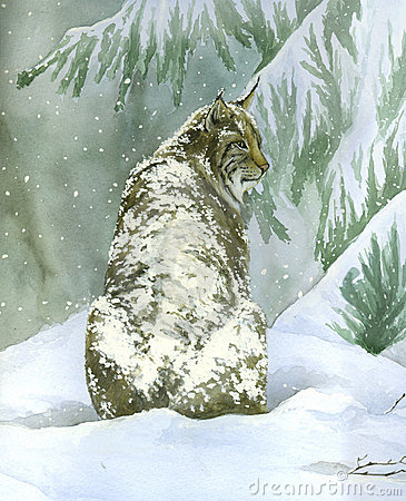 Bobcat under the snow (vertical)- watercolour