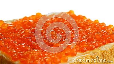 Bocadillo con el caviar almacen de metraje de vídeo