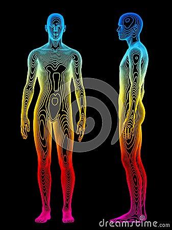 Free Body Analysis Royalty Free Stock Photography - 5838867