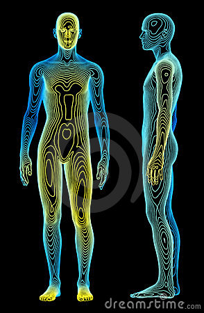Free Body Analysis Royalty Free Stock Photo - 5838905
